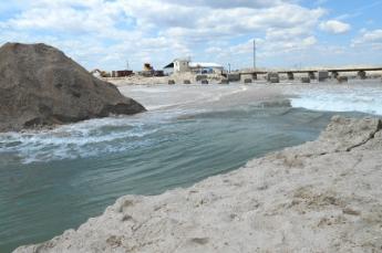 Появилось видео, как тысячи рыб выпустили из Молочного лимана в Азовское море (видео)