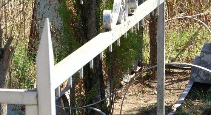 В Запорожской области разворовали кладбище (ФОТО)