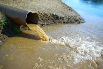 За слив нечистот в реку никого не наказали