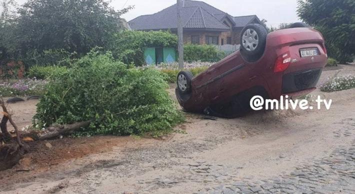 В Мелитополе девушка за рулем авто снесла дерево и перевернулась (фото, видео)